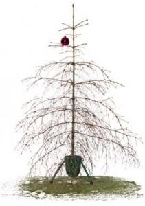 christmas-tree-dry-211x300